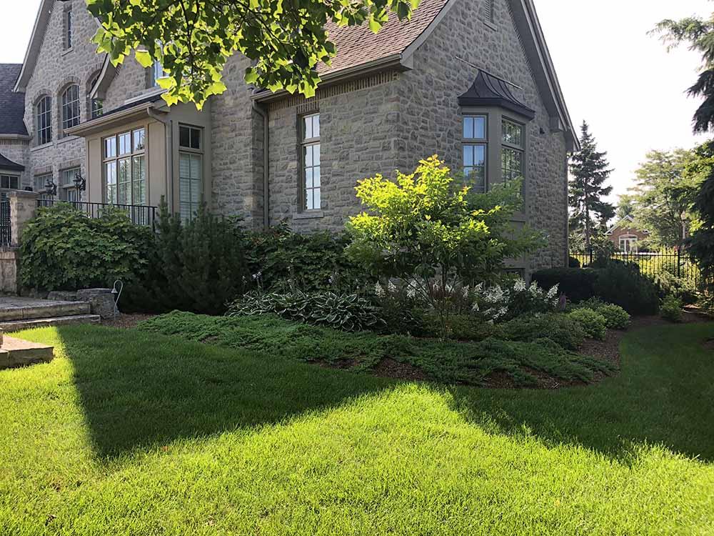 Garden Next To Home In Kitchener ON